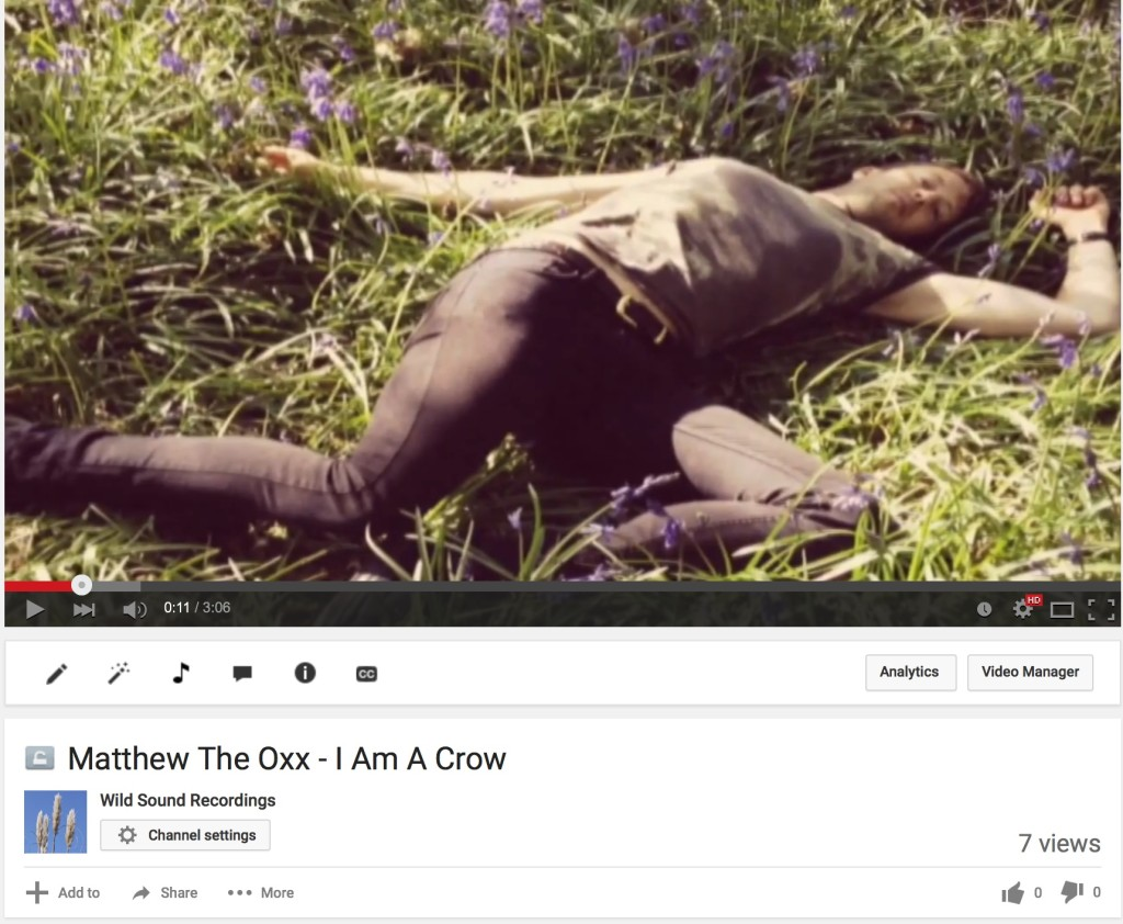 Matthew The Oxx video release -- I Am A Crow